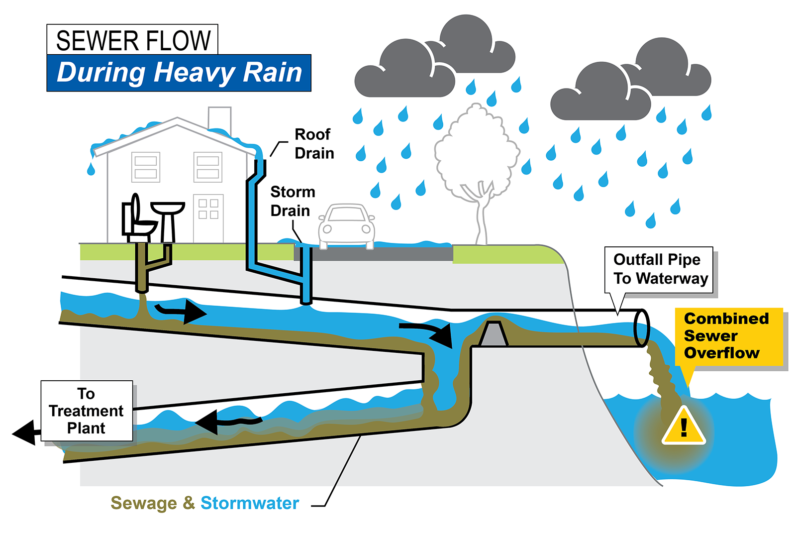 During heavy rain, sewage and stormwater can overflow into a nearby body of water.