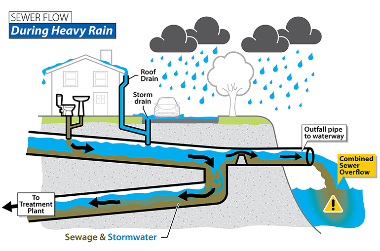 During heavy rain, sewage and stormwater can overlow into a nearby body of water.