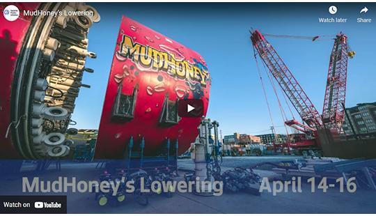 screenshot of MudHoney's Lowering